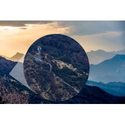 Papier peint forêt en Himalaya