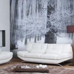 Papier peint paysage d'hiver