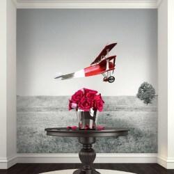 Revêtement mural avionette