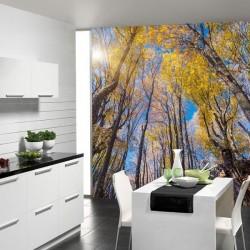 Adhésif mural forêt 2