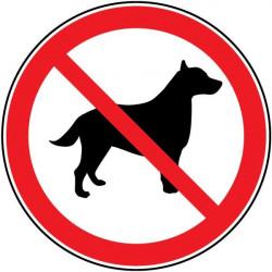 Sticker entrée interdite d'animaux