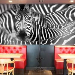 Revêtement mural zèbres