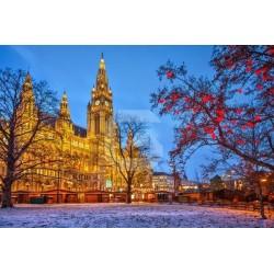 Déco murale attractions à Vienne