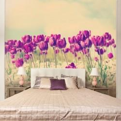 Papier peint champ de tulipes
