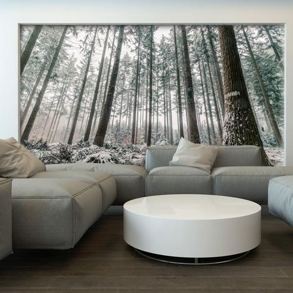 Papier peint plantation de pins