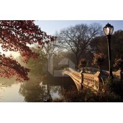 Papier peint pont à Central Park