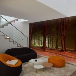 Déco murale forêt