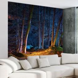 Papier peint forêt illuminée