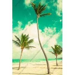 Papier peint plage exotique