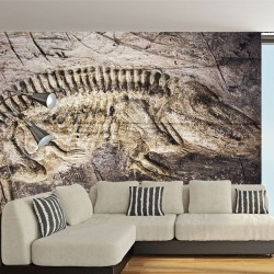 Poster mural fossile de...