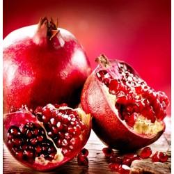 Sticker cuisine grenade fruit