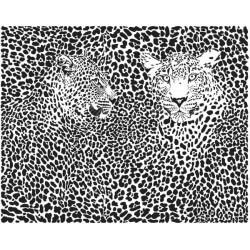 Papier peint couple de leopards