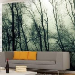 Papier peint forêt de nuage