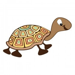 Sticker bébé tortue